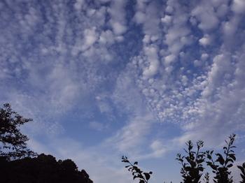 うろこ雲-2.jpg