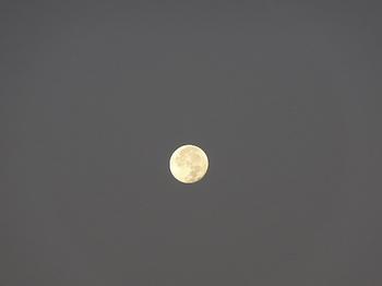 18.10.26 朝-1.JPG