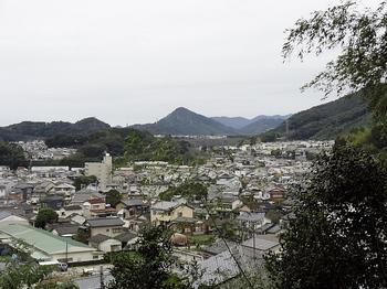 県道からの眺め.JPG