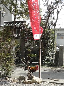 高知大神宮-1.jpg